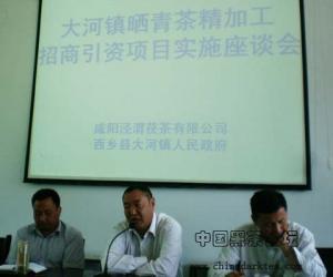泾渭茯茶带动大河镇茶产业发展 陕南茶农喜笑颜开