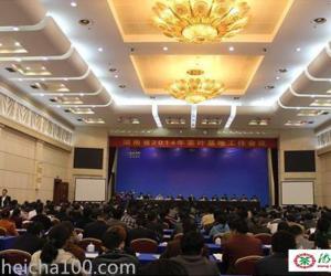 湖南省召开2014年茶叶基地工作会议